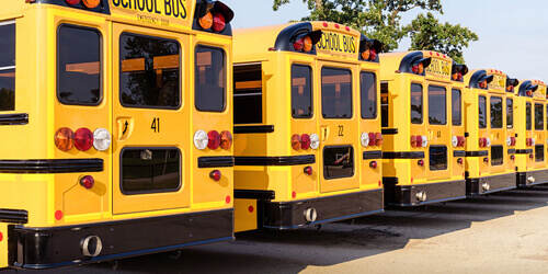 A row of school buses, showing the rear exit doors, are parked alongside each other.